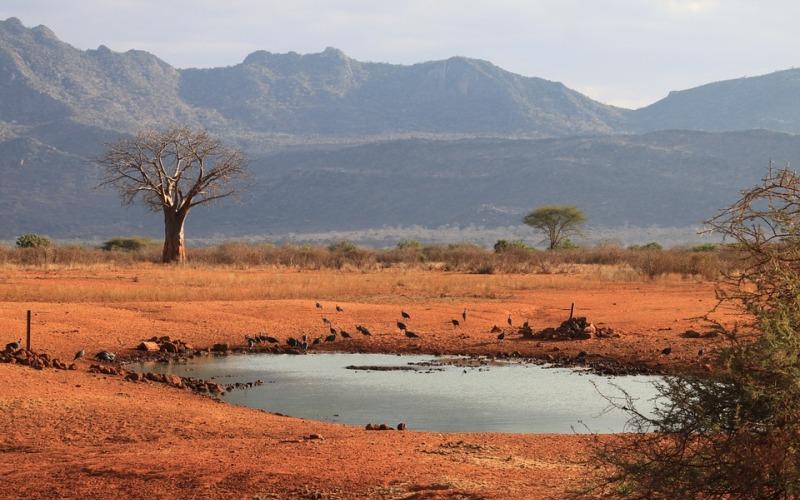 14 Days Kenya Safari Package Classic African Adventure